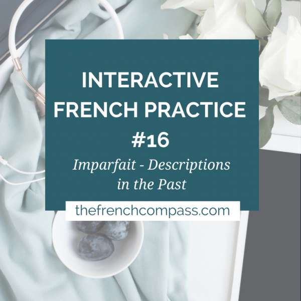 Interactive French Practice 16